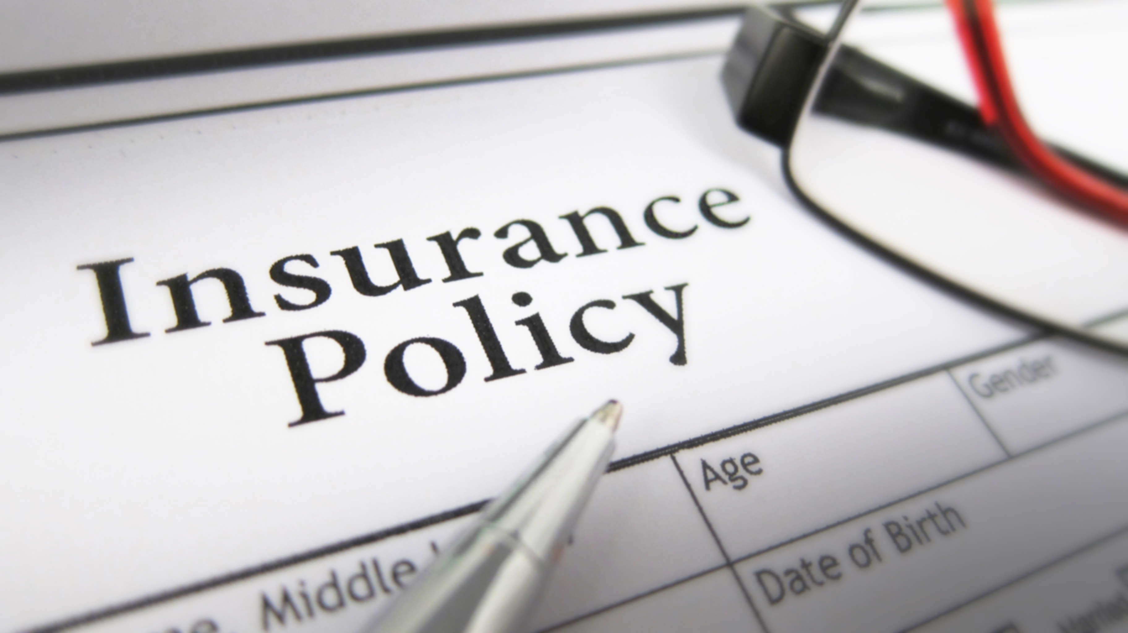 How Does Translator Indemnity Insurance Work?